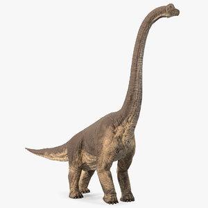 3D brachiosaurus walking pose