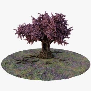 3D mature tree model