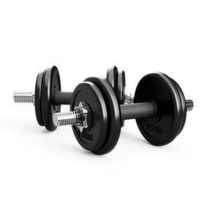 sports weight dumbbell 3D model