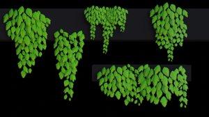 nature ivy plant 3D model