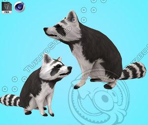 raccoon beast animal 3D model
