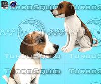 Cartoon  Dog baduk