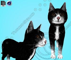 cat black 3D model