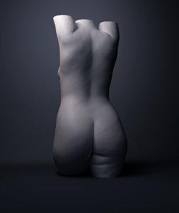 female torso model