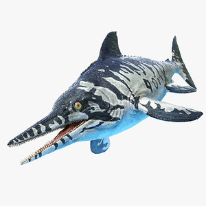 3D ichthyosaur