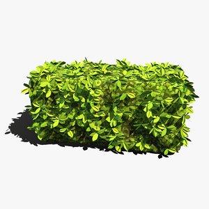 hedge stylized 3D model