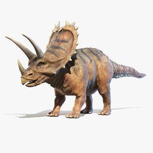 pentaceratops horn model