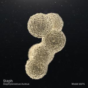 3D microbes bacteria cells model