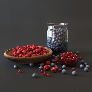 blueberry raspberry food model