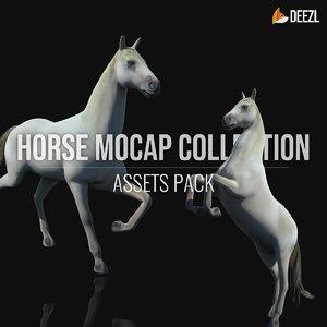 horse animation mocaps 3D model