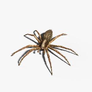 3D grass spider