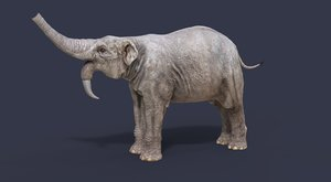3D nature animal dinosaur