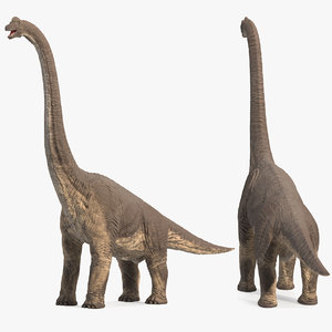 3D model brachiosaurus altithorax rigged