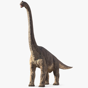 brachiosaurus altithorax rigged 3D model