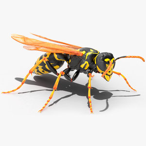 3D paper wasp rigged model
