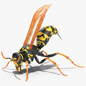 3D paper wasp rigged