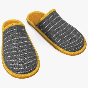 3D home slippers