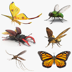 Rigged Flying Insects Collection for Maya