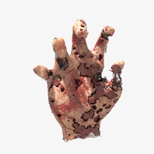 dirty infected hand 3D