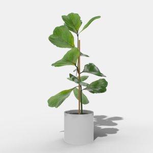 green plant 3D model