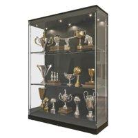 Photorealistic Trophy Showcase