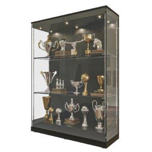 3D realistic trophy showcase model