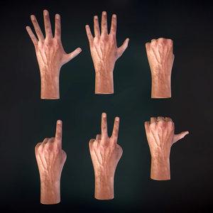 hand male anatomy 3D model