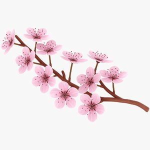 3D realistic cherry blossom model