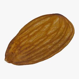 3D almond nut 01 raw model