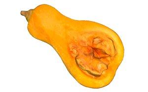 3D half gourd