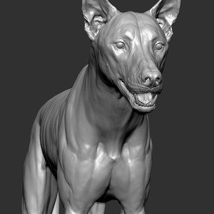 3D wolf zbrush