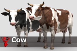 cow animations 3D model
