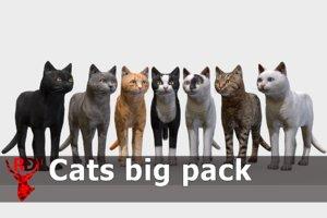 3D pack cat animal