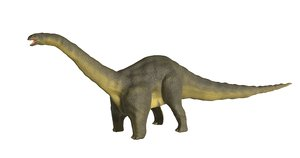 ancient animal apatosaurus dinosaur model