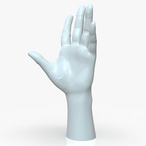 3D hand casual woman f1p3d1v1hand model
