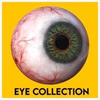 Eye anatomy photorealistic eyeball