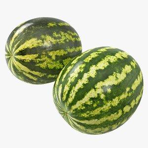 3D 02-03 watermelon