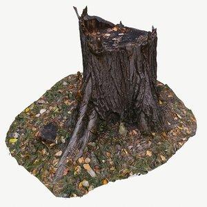 3D scan bpr tree stump