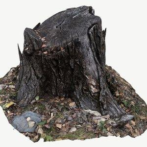 scan bpr tree stump 3D model