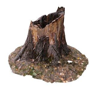 scan bpr tree stump 3D