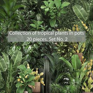 3D set plants pots interior