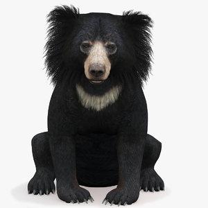 3D bear rigged sloth model