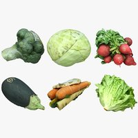 Vegetables Collection 03