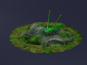 orange hook locust cricket 3D model