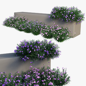3D brittoniana plant set 04