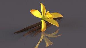 3D vanilla orchid spice flower