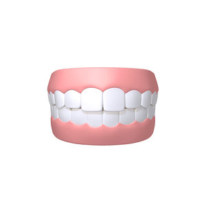 human mouth teeth cartoon 3D model
