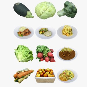 mixed food vegetables meal model