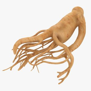 3D realistic ginseng
