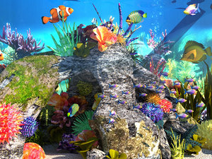 aquariums underwater world 3D